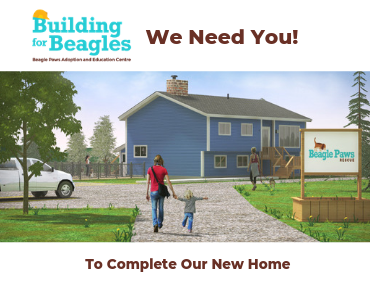 Beagle Paws purchases a property for its new Adoption and Education Centre