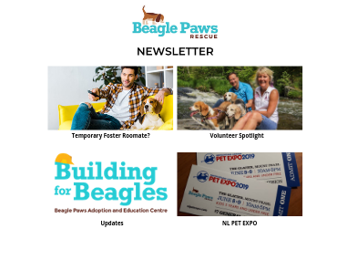 Did you catch May's Newsletter?