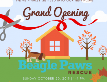 You're Invited!  Sunday October 20th to our Grand Opening