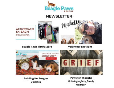 Did you receive our latest newsletter?
